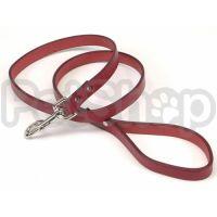 Coastal Circle-T кожаный поводок для собак, 2смХ1,2м
