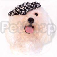 Doggyduds CHUNKY BOUCLE кепка, одежда для собак