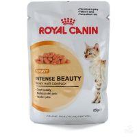 Royal Canin Intense Beauty in gravy (роял канин бьюти влажный корм для кошек с чувствительной кожей или проблемной шерстью)