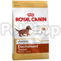Royal Canin DACHSHUND JUNIOR ( Полнорационный корм для щенков породы такса в возрасте до 10 месяцев)