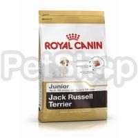 Royal Canin Jack Russel Terrier Junior ( роял канин для щенков породы джек-рассел-терьера)