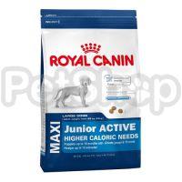 Royal Canin Maxi Junior Active (корм для щенков крупных собак  (вес взрослой собаки от 26 до 44 кг) с высокими энергетическими потребностями в возрасте до 15 месяцев)