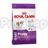 Royal Canin Giant Puppy (сухой корм для щенков собак очень крупных размеров  (вес взрослой собаки более 45 кг) в возрасте с 2 до 8 месяцев)