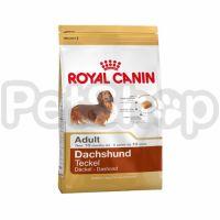 Royal Canin Dachshund Adult ( корм для собак породы такса старше 10 месяцев)