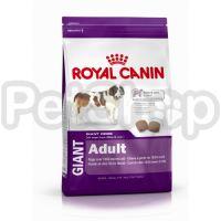 Royal Canin Giant Adult (сухой корм для взрослых собак очень крупных размеров  (вес взрослой собаки более 45 кг) в возрасте старше 18/24 месяцев)