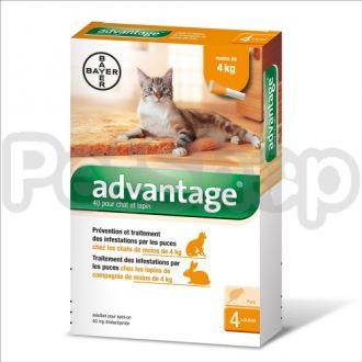 Bayer Advantage (Адвантейдж ) для котов от блох и клещей