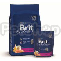Brit Premium Cat Chicken Adult ( брит премиум сухой корм с курицей для кошек всех пород старше 1 год)