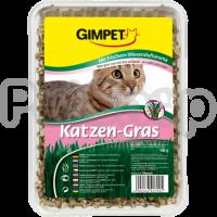 Gimpet Cat Grass ( джимпет с травой Кошки всегда нуждаются в свежей зелени, из-за чего они часто грызут листья комнатных растений)