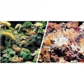 Hagen №11778 - фон для аквариума риф/329, высота 45,7 см