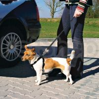 Trixie Car Safety Harness ( Пояс-шлея безопасности для собак в автомобиль из нейлона)