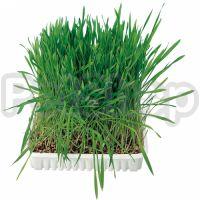 Trixie Cat Grass ( Трава для кошек в пакете)