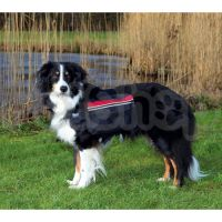 Trixie Backpack for Dogs ( Рюкзак для собак нейлоновый)
